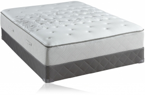 Sealy Sealy Posturepedic Sealy Embody Mattresses Sale