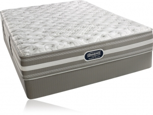 Simmons Beautyrest Recharge World Class Englewood Cliffs Extra Firm Mattress